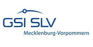 logo_gsi_slv